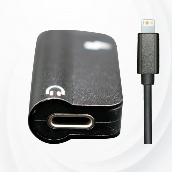 Smart 2 in 1 Charger With Audio Port Gadget